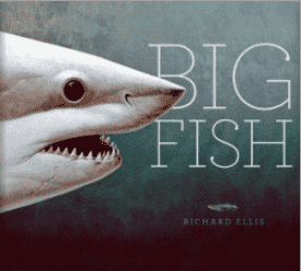 Big Fish Book Book
