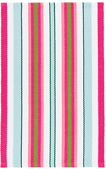 Watermelon Stripe Indoor/Outdoor Rug Rug