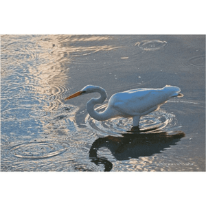 Great Egret in patterns, Photography on Canvas Art
