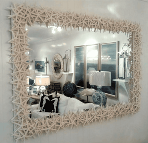 Starfish Mirror Mirror