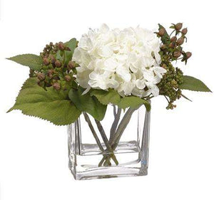 "White Hydrangea & Sedum in Glass Vase - 8"" Floral"