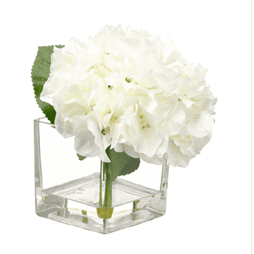 "White Hydrangea 8"" in Glass Block Vase"