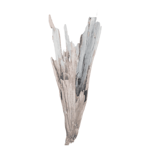Driftwood Cone 04 Wall Decor