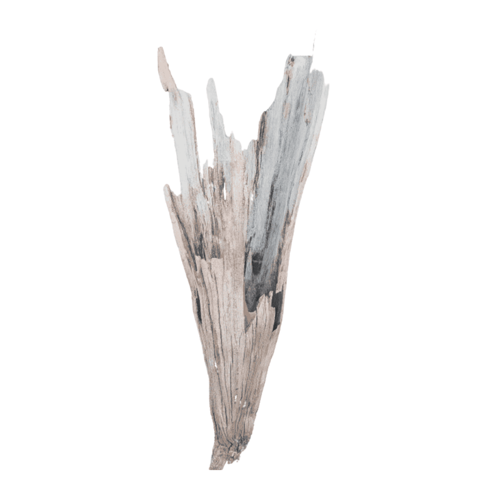 Driftwood Cone 04