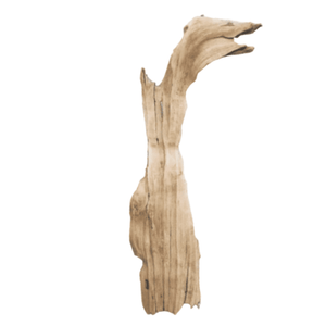 Driftwood Flat 06 Wall Decor