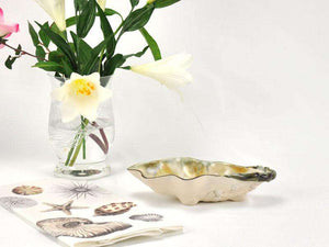 Oyster Shell Bowl - Small Entertaining
