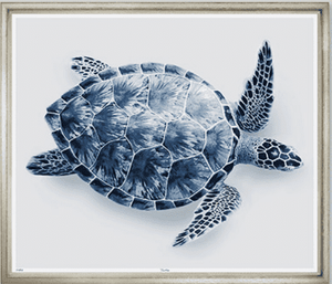 Sea Turtle in Indigo - Giclee from London Gallery Art