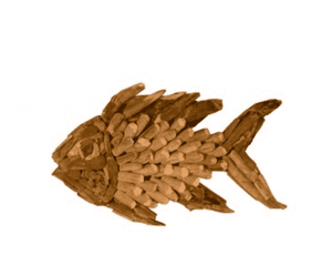 Driftwood Angel Fish Wall Decor - Three Sizes Wall Decor Small