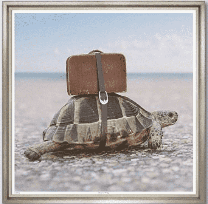 Tortoise Travels - Framed Giclee Art