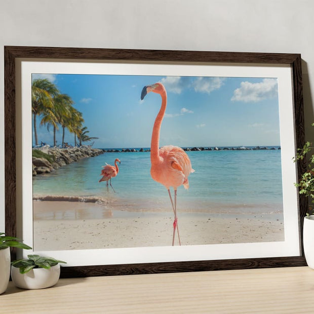 Beach Flamingo