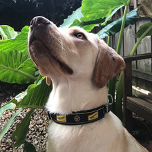 Load image into Gallery viewer, WAYWARD DOG COLLAR