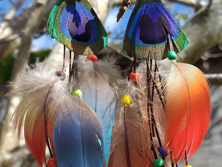 Peacock n Feather Earrings
