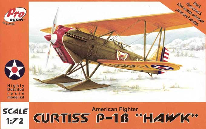Curtiss Hawk P1B 1/72 (Resin)