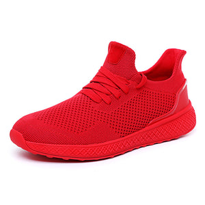 New Mesh Breathable Casual Shoes