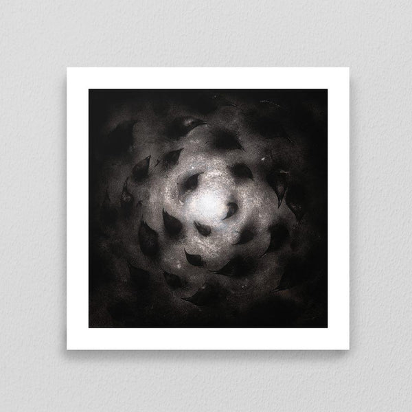 Stephen Kasner 'Birds Inventing Spiral (The Black Void is the Vortex)' Signed Giclee Print