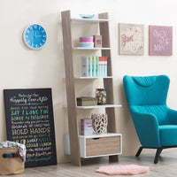 Pulford Ladder Bookcase