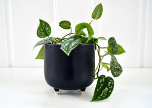 Medium Footed Ceramic Planter - Matte Black