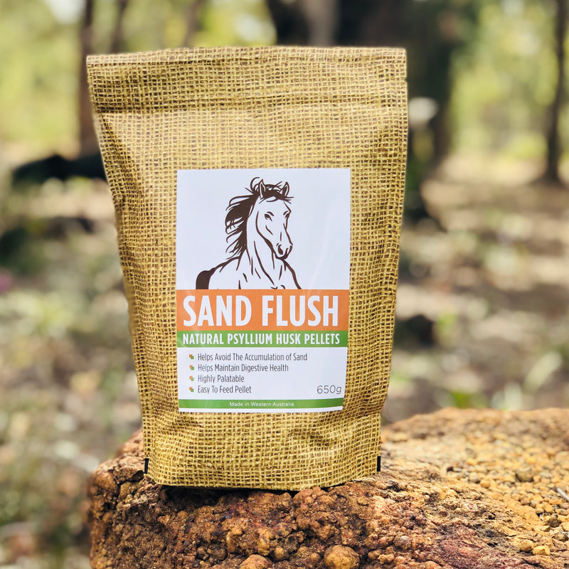 SAND FLUSH 650g - DISCONTINUED