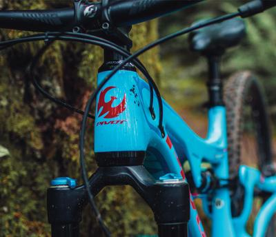 c6e063f7f6 Northwest Bicycle - Shop Online & In Store - Snoqualmie & Maple Valley
