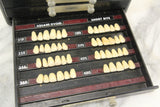 The Dentists' Supply Co. of New York Bioform False Teeth Bakelite Cabinet