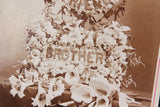 Antique Cabinet Card Funeral Flower Arrangement Photograph for Deceased Brother & Friend