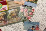 Memory Hole Vintage Ephemera Pack Grab Bag - Postcards, Photos, Letters, Patches, & More