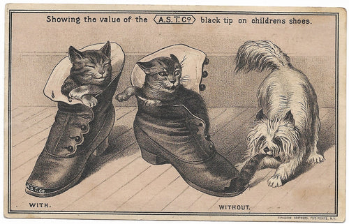 A.S.T. Co. Black Tip Antique Trade Card, Pawtucket, RI - 5