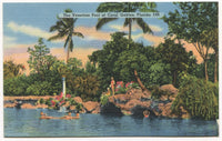 The Venetian Pool at Coral Gables, Florida Vintage Postcard