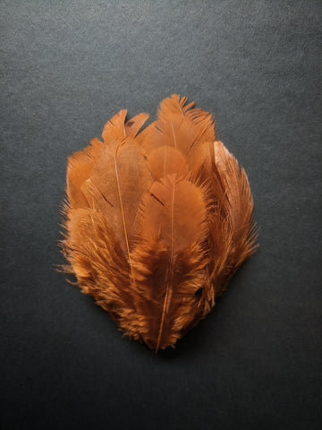 Caramel Brown - Natural Small Feathers (100 Pieces)