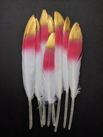 Fuchsia - Golden Tipped Goose Feathers (10 Pieces)