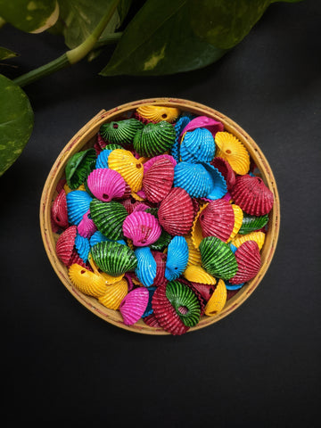 Multicolour Sea Shells (100 Pieces)