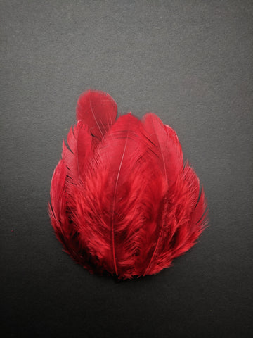 Maroon - Natural Small Feathers (100 Pieces)