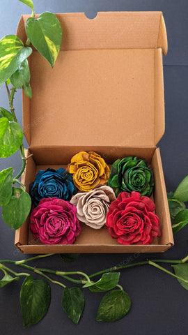 Multicolour Roses (Pack of 6)