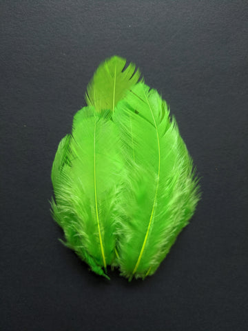 Parrot Green - Natural Small Feathers (100 Pieces)