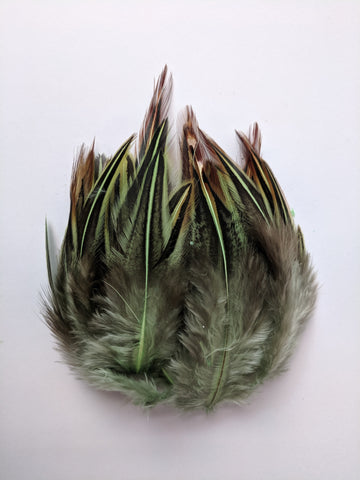 Parrot Green - Dual Shaded Chicken Feathers (100 Pieces)