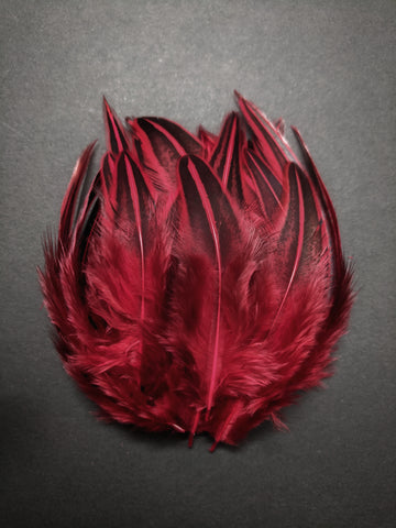 Red - Dual Shaded Chicken Feathers (100 Pieces)