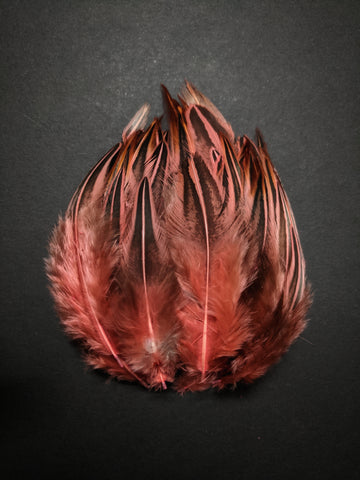 Salmon Pink - Dual Shaded Chicken Feathers (100 Pieces)