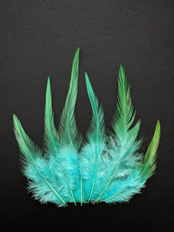 Shaded Green - Long Pointed Natural Feathers (100 Pieces)