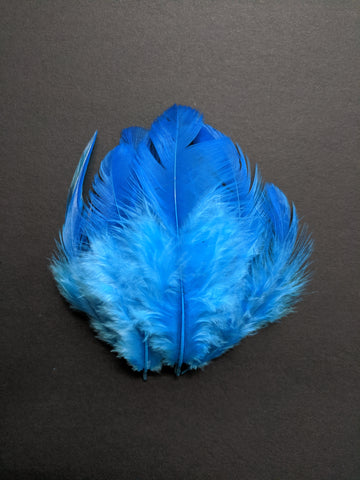 Shaded Sky Blue - Chicken Feathers