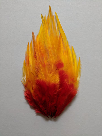 Sunset Shades - Long Pointed Natural Feathers (100 Pieces)