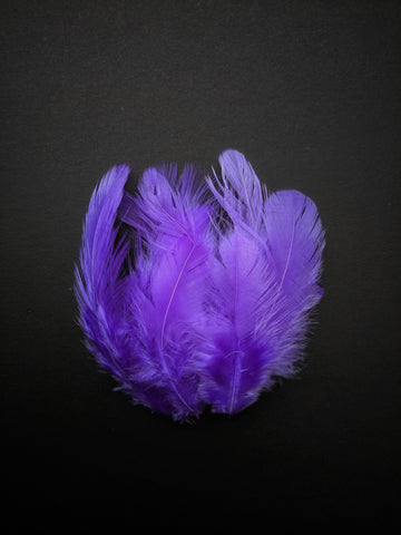 Violet - Natural Small Feathers (100 Pieces)