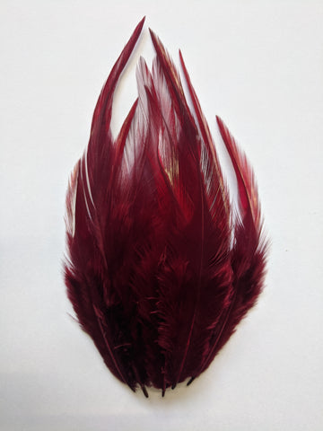 Wine - Long Pointed Natural Feathers (100 Pieces)