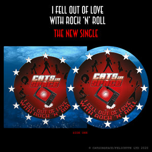 "I FELL OUT of LOVE WITH ROCK 'n' ROLL / 2:59  7"" Picture Disc"