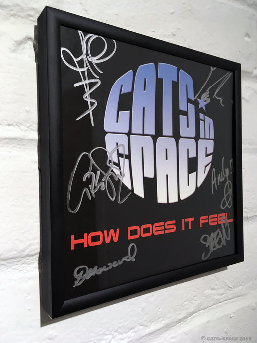 'HOW DOES IT FEEL'  Fully signed - Collector's framed single sleeve