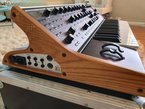 CATS in SPACE - MOOG SUB 37 'Tribute Edition' MINI MOOG SYNTHESISER