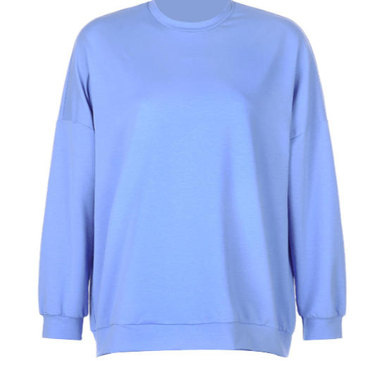 Blue Casual Style Sweatshirt for Women