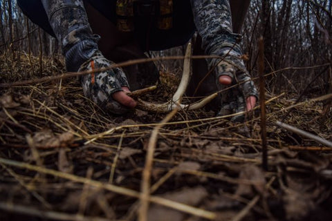 TOP 3 SHED HUNTING TIPS