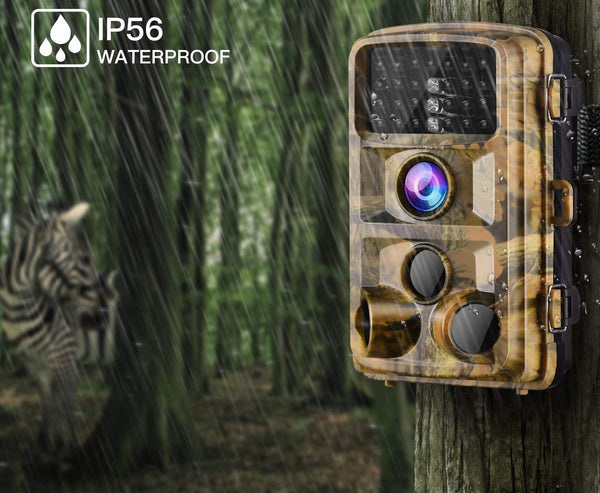 Capture the candid moments of wildlife acting natural By Trail Cameras