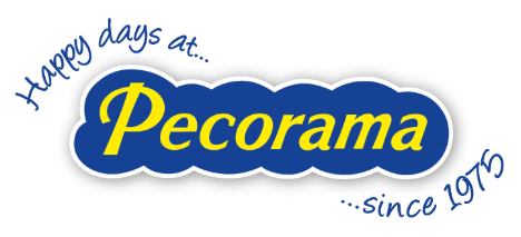 Pecorama Model Shop
