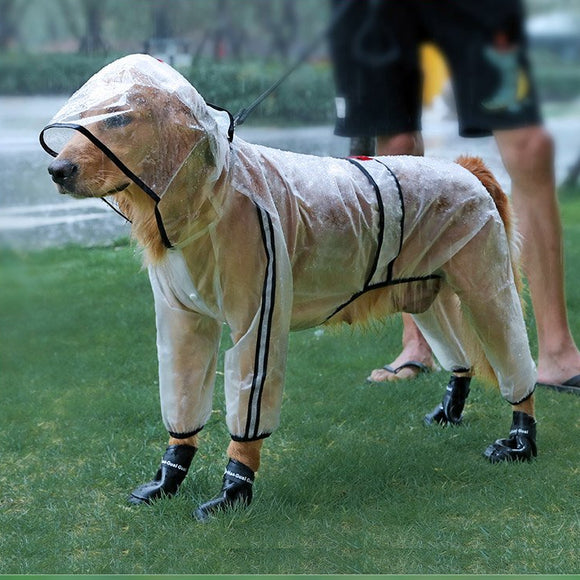 Transparent Hooded Dog Raincoat